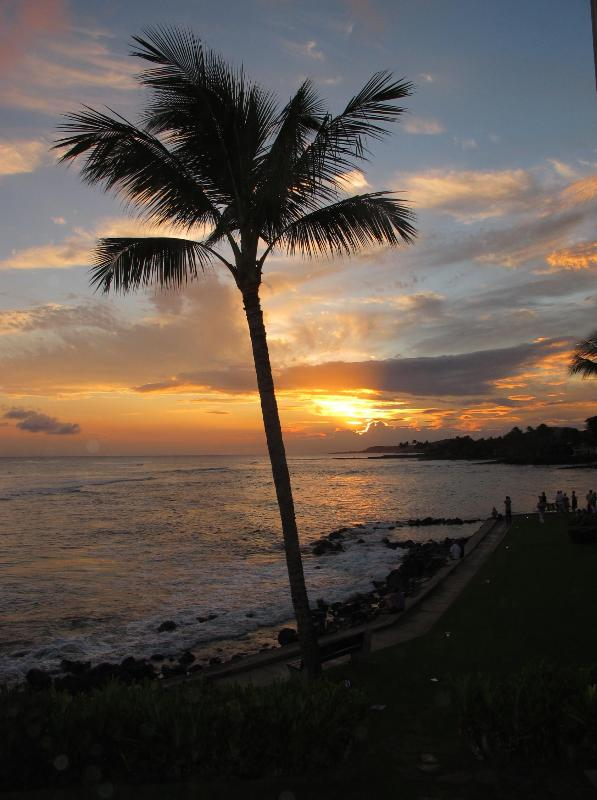 Beautiful Sunset Views - Luxury Oceanfront 2 Bedroom Vacation Rental - Koloa - rentals