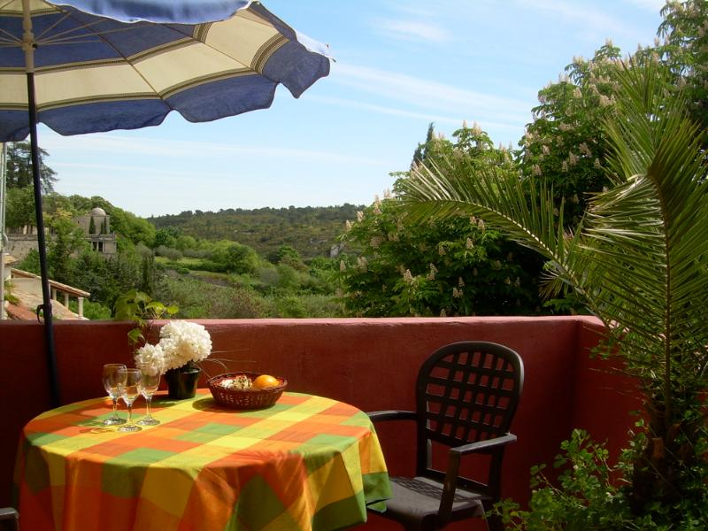 Terrace to east & south - Center of town with valley views - Uzes - rentals