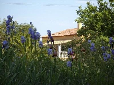 Our Home - Townhouse in St Tropez Town - Saint-Tropez - rentals