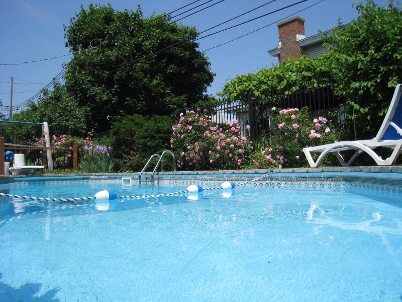 Swimming-pool - Oasis in Montreal 2 bedrooms - Chez Nathalie - Montreal - rentals