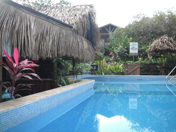 Guava Grove pool to house - Guava Grove Villas - Sandy Bay - rentals