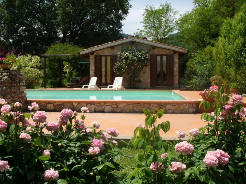 The house and pool - Casale Eredità countrycottage 70km north Rome Orte - Orte - rentals
