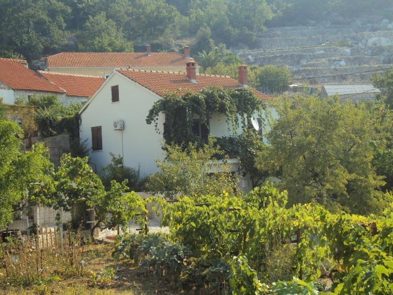 Holiday house near Dubrovnik - Holiday house Petar in Orasac near Dubrovnik - Orasac - rentals