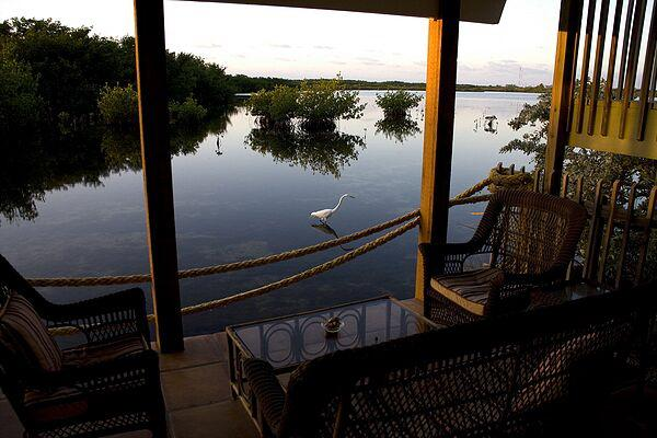 Sunrise on patio - Quiet Open Water On Wild Life Sanctuary - Marathon - rentals