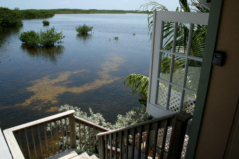 Terrace Views of Nature Preserve - Quiet Open Water Retreat On Nature Preserve - Marathon - rentals