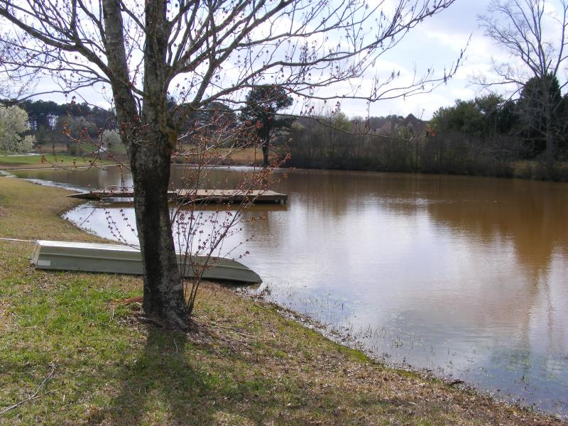 Lake View - Lake Front Estate in the City of McDonough. - McDonough - rentals