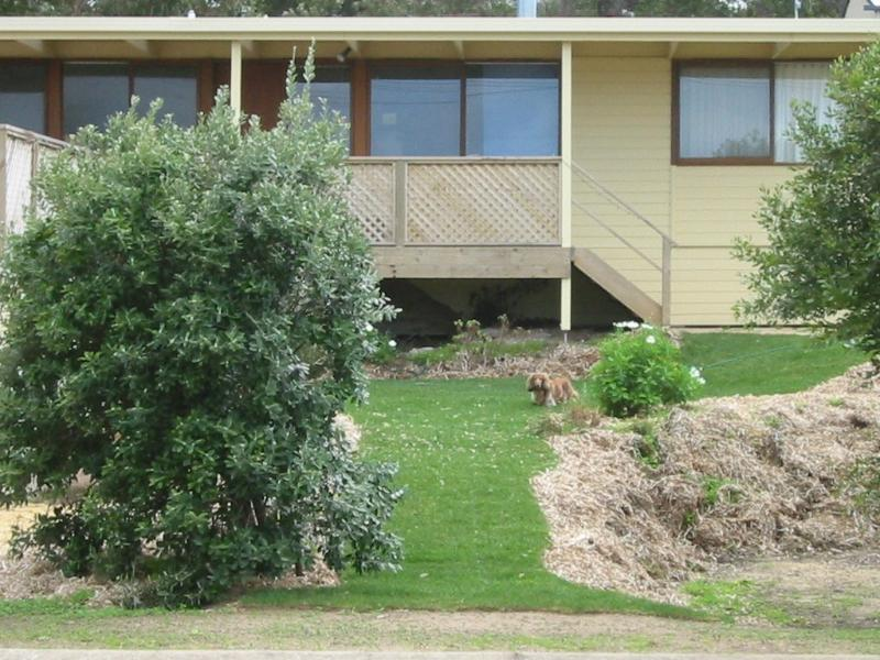 The Shelter B&B at Robe SA - Image 1 - Robe - rentals