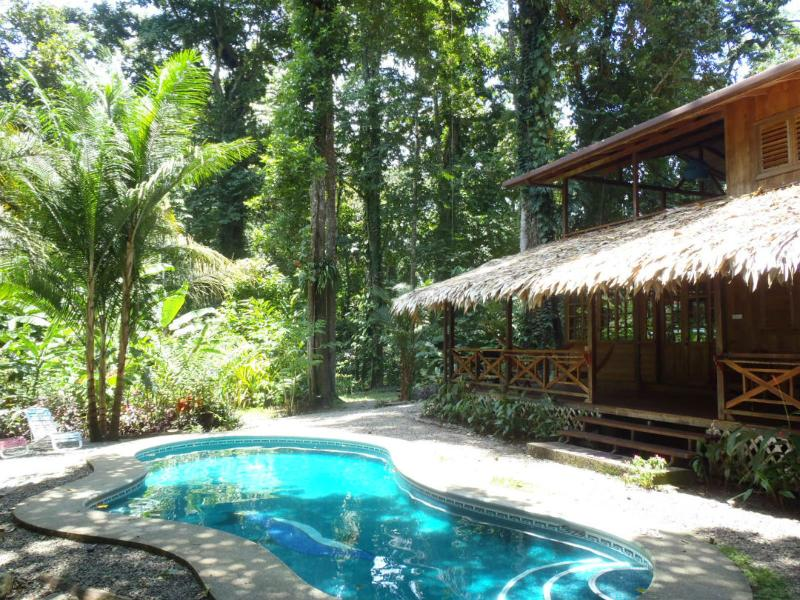 Swimming-pool  - The Sloth House - Caribbean house w/ swimming-pool - Puerto Viejo de Talamanca - rentals