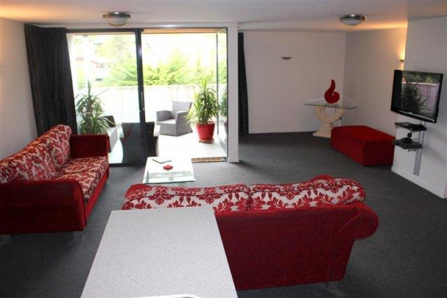 Living - Apartment 4 on Conical - Hanmer Springs - rentals
