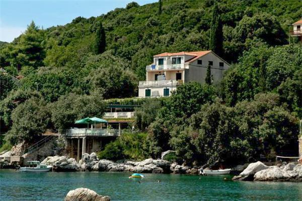Renovated apartment for 2 persons, with swimming pool , near the beach in Cavtat - Image 1 - Molunat - rentals