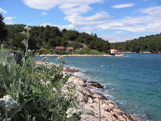 Apartment for 5 persons in Losinj - Image 1 - Mali Losinj - rentals