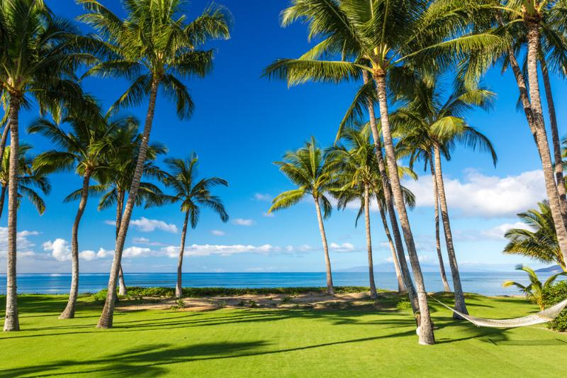 West Facing Beachfront Property Great for Paddle Boarding and Kayaking! - Mango Surf Beach Front Villa - Kihei - rentals
