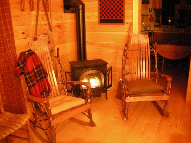 Relax by the fire - THE LIL' RUSTIC CABIN - Franklin - rentals
