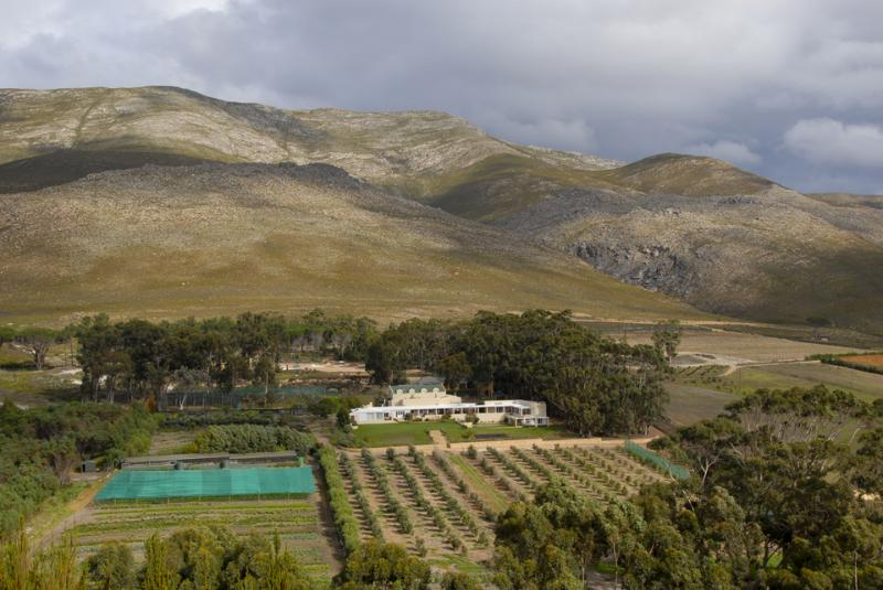 Aerial shot of the villa and surrounding farm. - The Drift Farm Villa - Cape Town - rentals