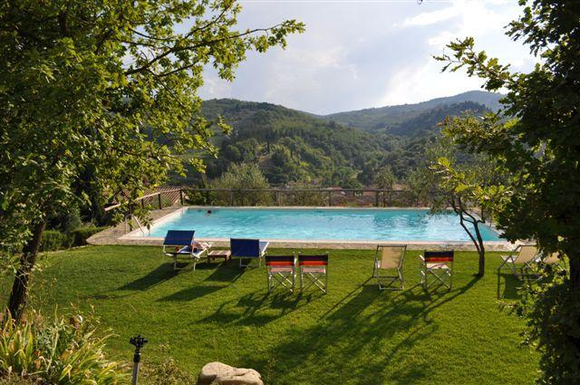 salted swimming pool - Relaxing, family winery in the Chianti Classico region - Greve in Chianti - rentals