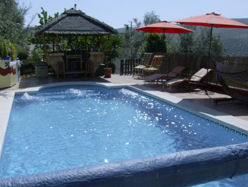 The Pool & Gazebo - Casa Limon - Villanueva De Algaidas - rentals