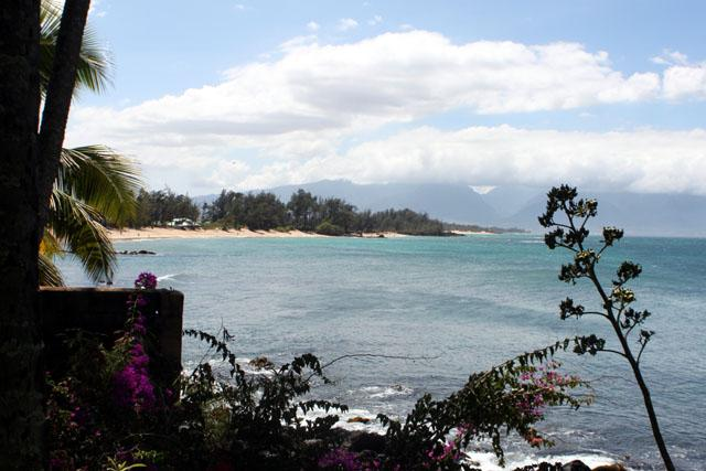 stunning coast line views - Paia Bay Cottage, ocean front, License STPH2013/0013 - Paia - rentals