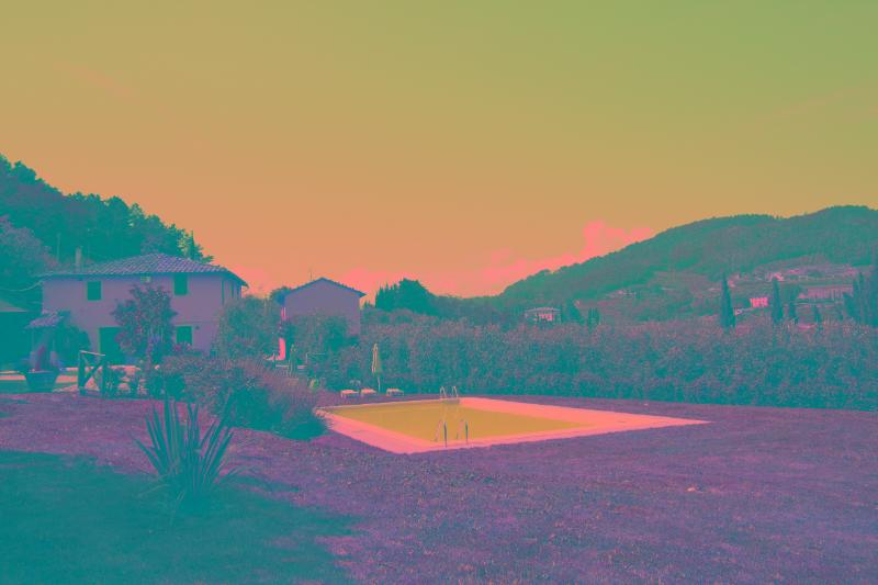 Gelsomino- Swimming Pool -Wifi- Special Offer June - Image 1 - Lucca - rentals
