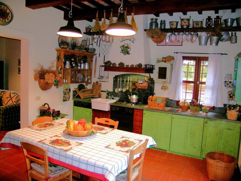 Lovely Cottage with garden in the Heart of Tuscany - Image 1 - Palaia - rentals