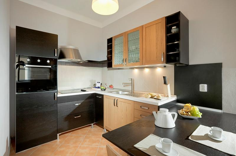 Happy Prague  - Happy Prague Apartment - Czech Republic - rentals
