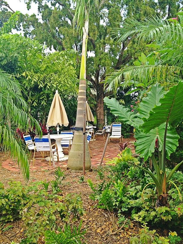 outside - Beach, Pool and steps to Atlantic Ave - Delray Beach - rentals