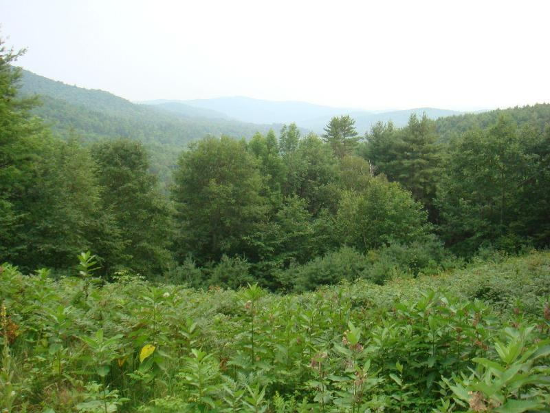 Misty View of Valley - Beautiful Post & Beam Mountain Retreat Home - West Fairlee - rentals