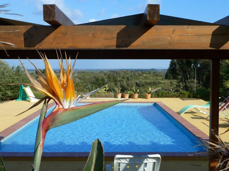 Casa Mimosa Silence in the middle of nature, close to the beach - Image 1 - Santiago do Cacem - rentals