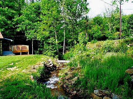 Rushing Mountain Creek to Soothe your Spirit - Cuddles Cottage - Barnardsville - rentals