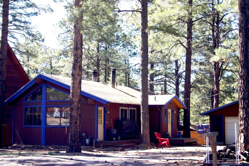 Cabin nestled in the pines of Kachina Village - Uniquely,  Located Near One of  Worlds 7 Wonders! - Flagstaff - rentals