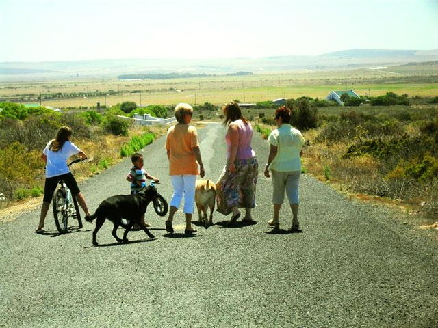 Lazy Lodge Guest Ranch - Image 1 - Paternoster - rentals