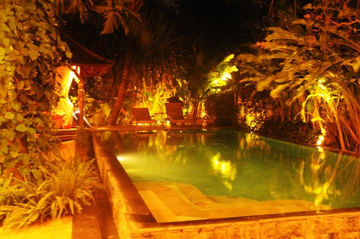 huge swimming pool - Villa Satya bali - Bali - rentals