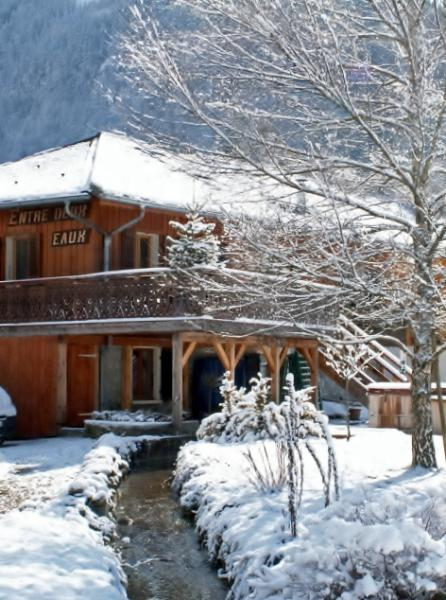 Entre Deux Eaux a 15 bed chalet in the French Alps - Image 1 - Montriond - rentals