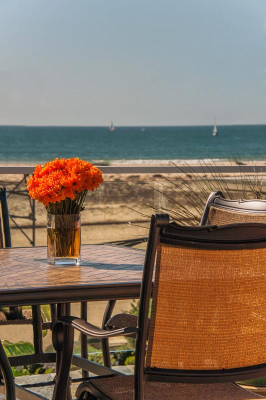 OCEANVIEW from the deck - Best-At-The-Ocean – California Dreamin' - One House to Ocean - Marina del Rey - rentals