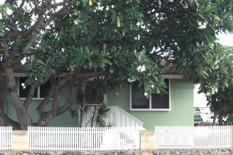 Shaded by the Plumaria Tree. Smell the island fragrance of the flowers. - Couples,Small Family,Steps from the Beach - Ewa Beach - rentals