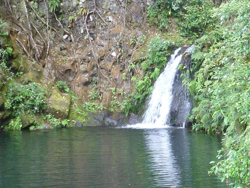 Swim Under your Mika Taki Waterfall - Magical Waterfall Estate - Mika Taki - In the Heart of Hilo - Hilo - rentals