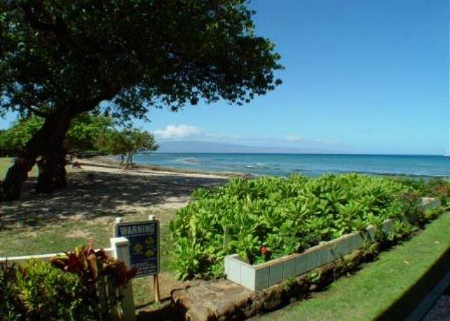 Hale Kai #103 - Your Home by the Sea in West Maui - Image 1 - Lahaina - rentals