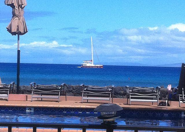 Hale Kai #117 - Your Home by the Sea in West Maui - Image 1 - Lahaina - rentals