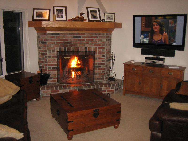 Living room with fireplace and flatscreen TV - LUXURY LAKEFRONT CONDO MOOSE POND BRIDGTON AREA ACROSS FROM SHAWNEE PEAK SKI - Bridgton - rentals