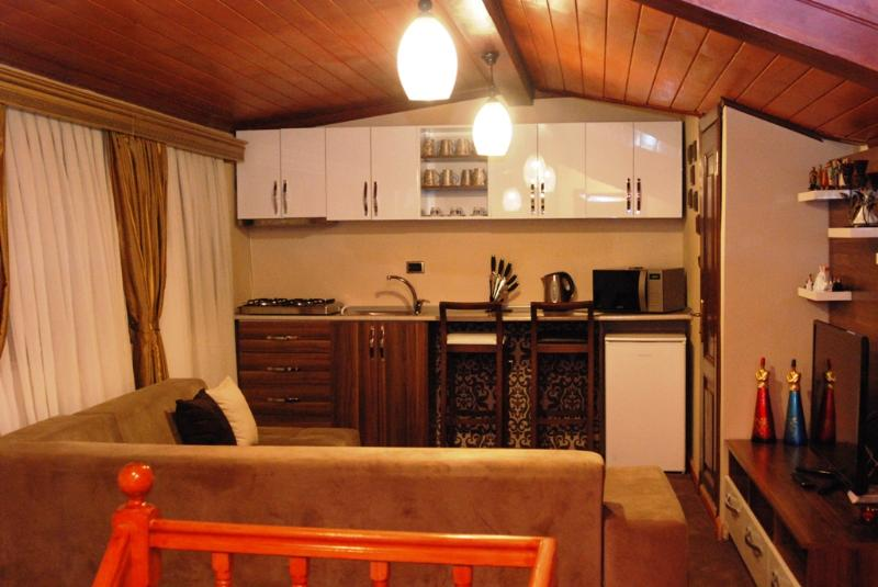 Feel Like Home Pashas House No:3 - Image 1 - Istanbul - rentals