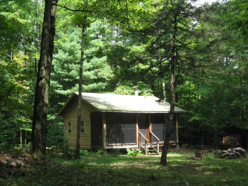 Our cabin in the woods - Woodland retreat - cabin near Oneida Lake - Camden - rentals