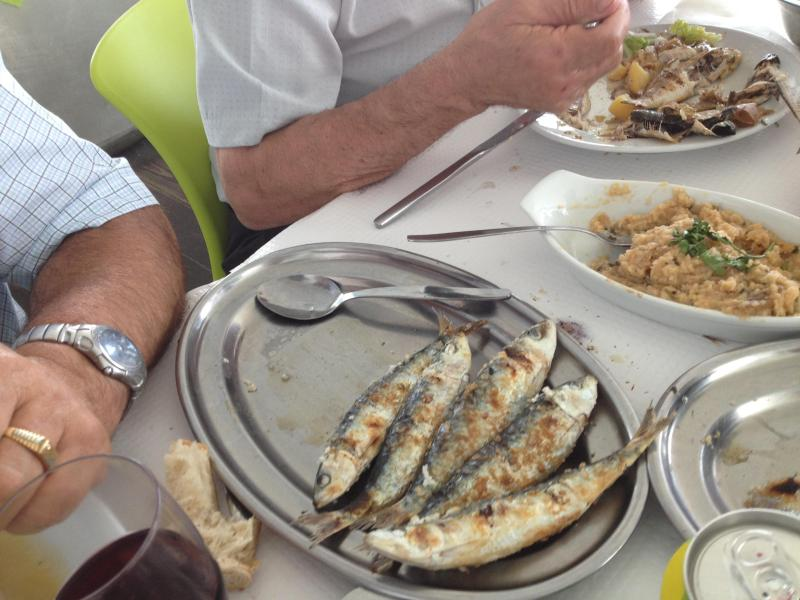 Fresh Sardines From the Sea - A Taste of Portugal - Setubal - rentals