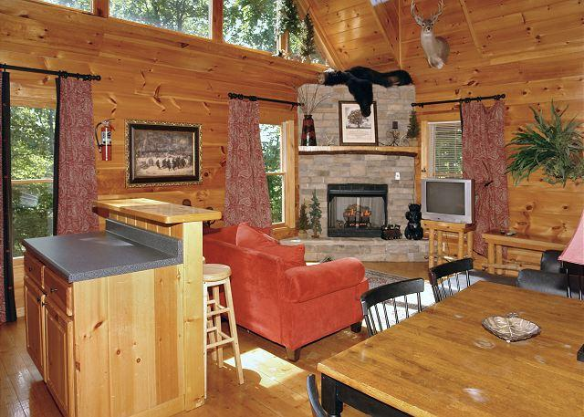 Relaxing and getting cozy next to the gas log fireplace in the l - Smoky Mountain Cabin BEAR NAKED LODGE 216 - Sevierville - rentals