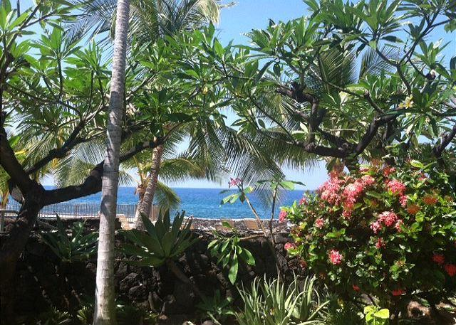 View from Living Area and Lanai - #CDE 137 - Casa De Emdeko 137 - Kailua-Kona - rentals