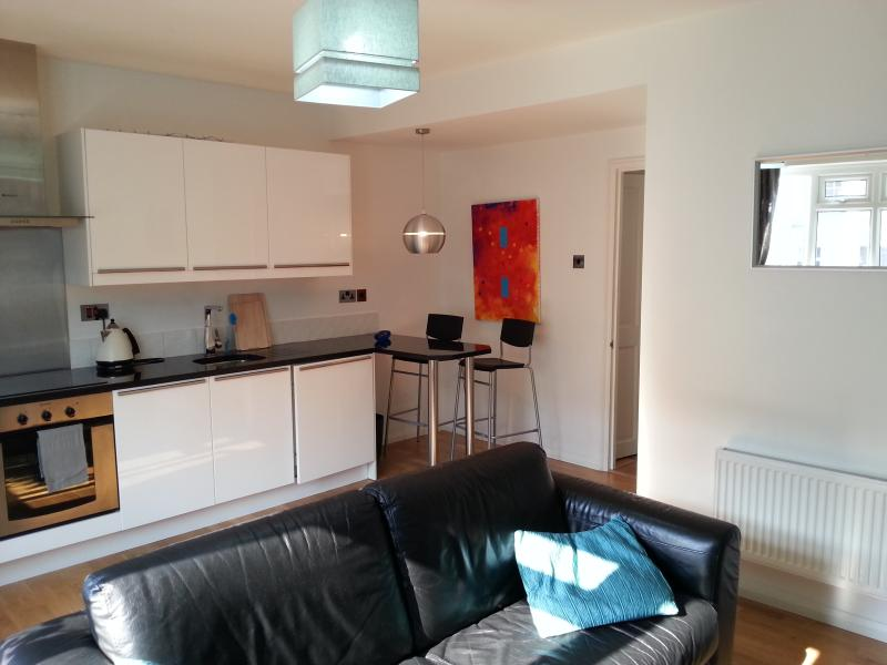 newly refurbished - SUPER OFFER-NEW ONE BEDROOM FLAT IN N1 - London - rentals