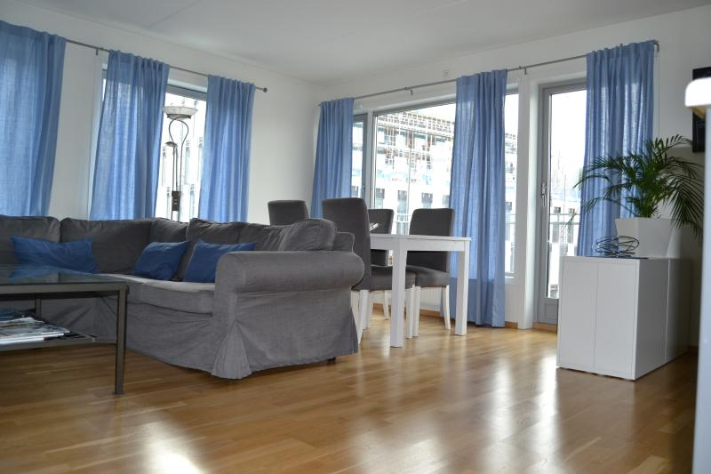 Spacious living room or 3d bedroom - Oslo city centre - high standard apartment - Oslo - rentals