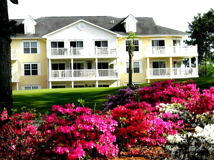 Springtime around the Plantation! - Ready for a relaxing vacation at Condo 501? - Calabash - rentals