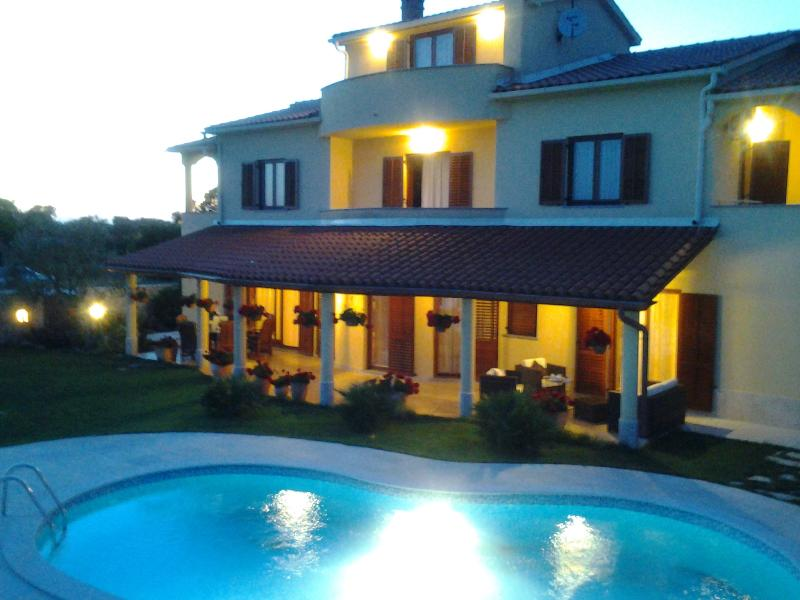 Villa Lana for large families or group,430m2 living, near the sea 4 km - Image 1 - Vodnjan - rentals