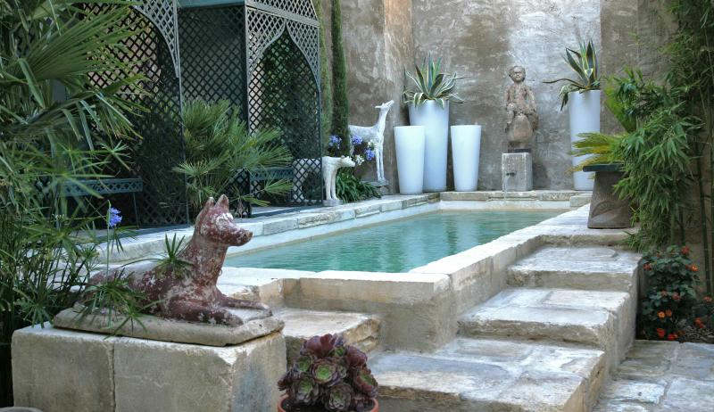 Maison Bleue ARLES FRANCE PROVENCE - Image 1 - Arles - rentals