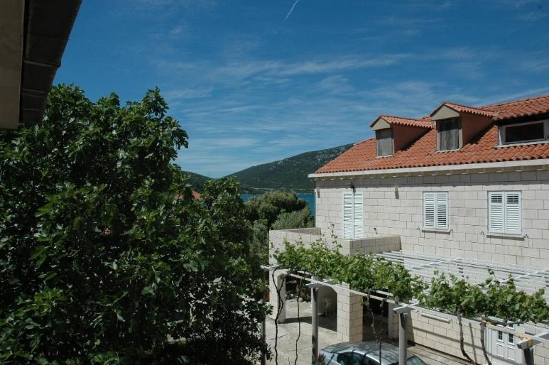 House from outside - Apartments KRILE - vacation in nature - Ston - rentals