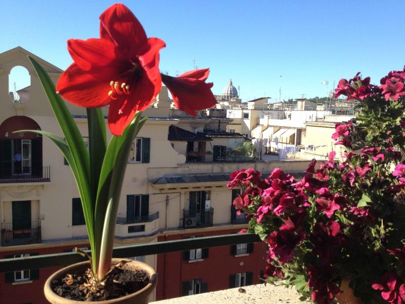 from my balcony - Bright & Panoramic Penthouse near Vatican St.Peter - Rome - rentals